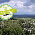 5_things_kildare
